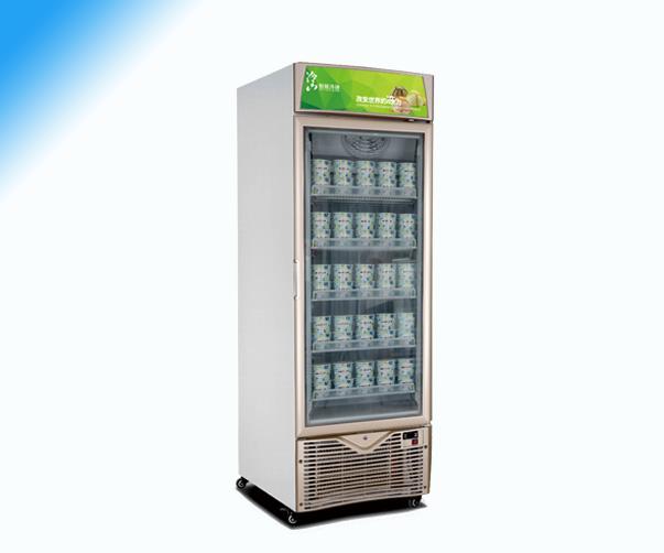 冰淇淋柜FD-LD57