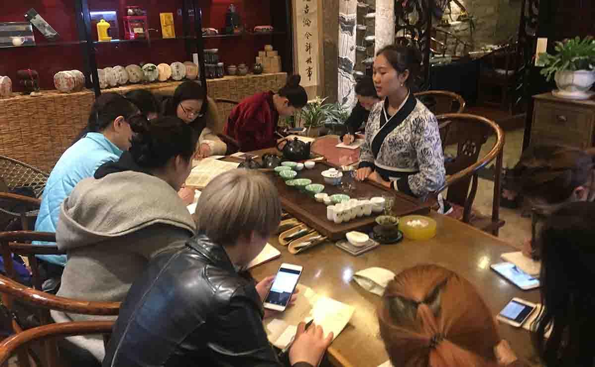 贵州成人茶艺培训