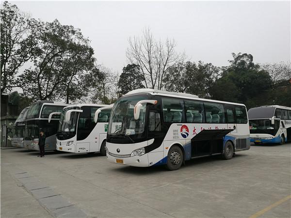 新津旅游租车