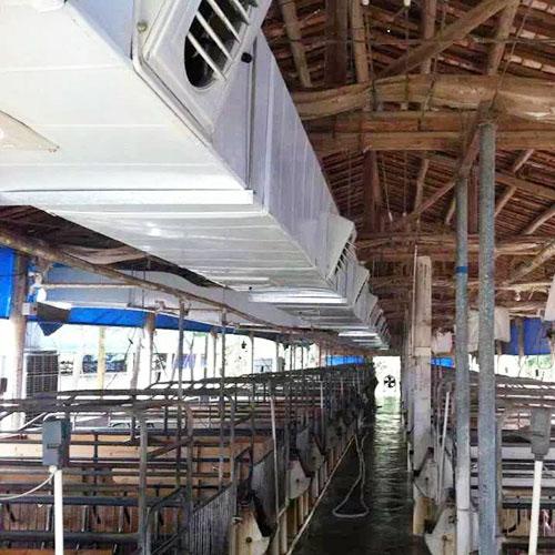 广州猪场降温