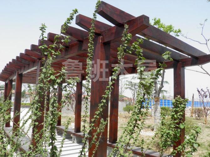 生态葡萄架