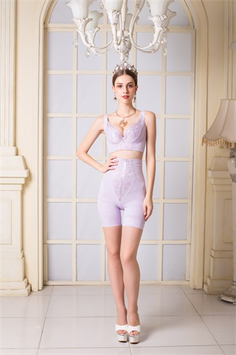 美丽经典紫色文胸