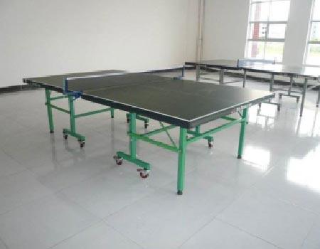 东莞乒乓球台