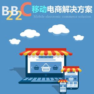 B2B2C平台开发