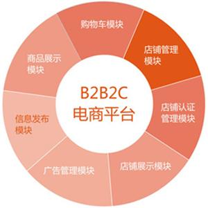 B2B2C平台定制