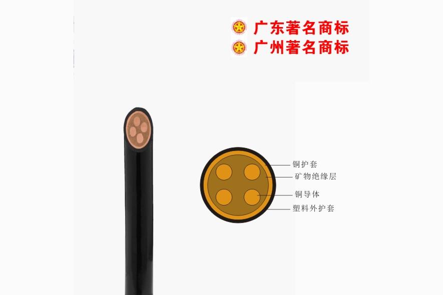 珠江电线电缆有限公司