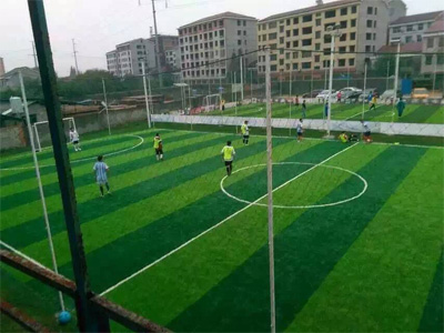 足球场专用人造草