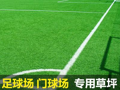 运动场专用草坪