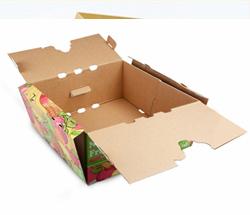 四川猕猴桃包装箱