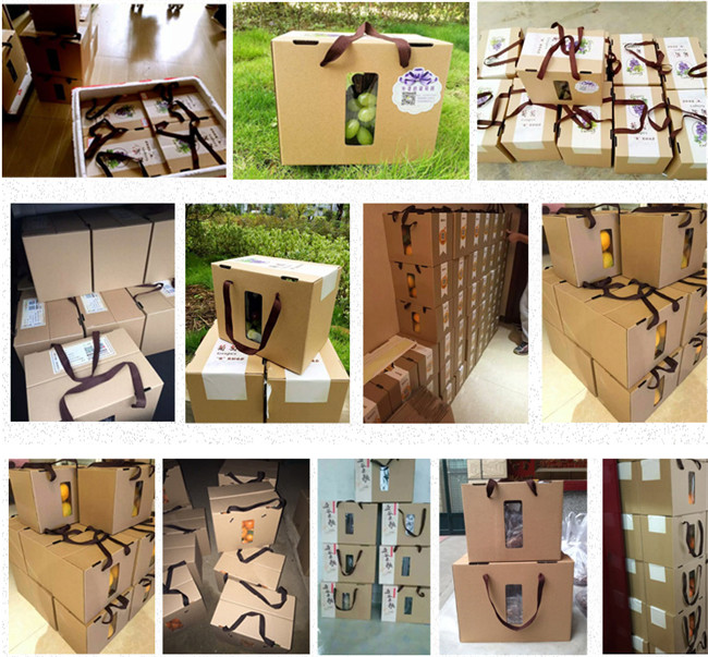 猕猴桃礼品盒箱