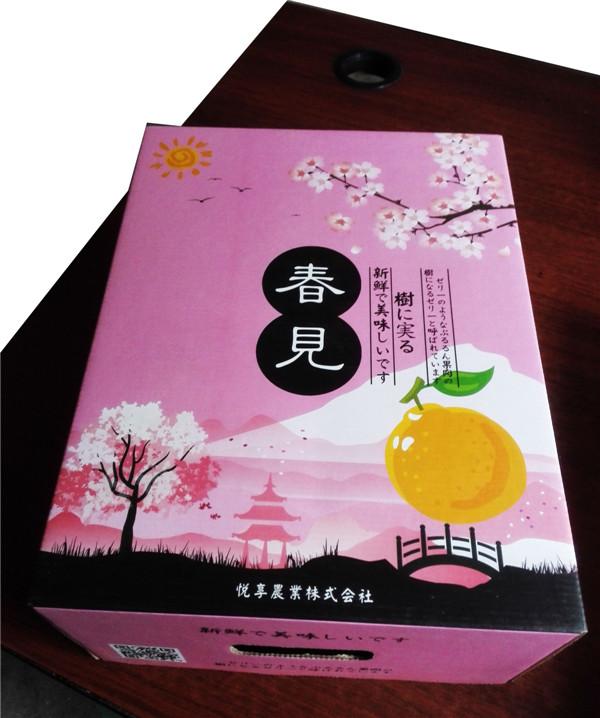 蒲江杷杷柑红天地盖盒