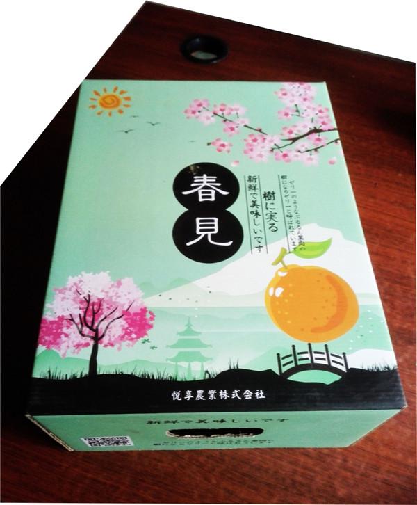 蒲江杷杷柑绿天地盖盒