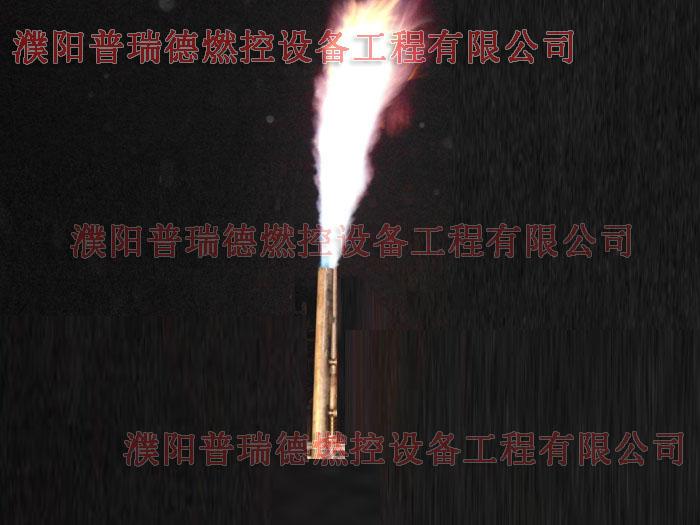 【盘点】如何让火炬长明灯保持长燃状态? 厂家长期供应优质高效环保火炬长明灯