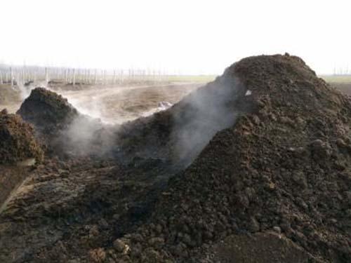 【热】怎样施肥可以达到既经济又有效的目的呢 湖北蔬菜水果有机肥分享油菜怎样施用生物有机肥