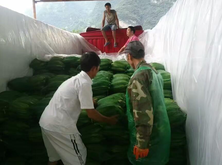瑞禾蔬菜有机肥