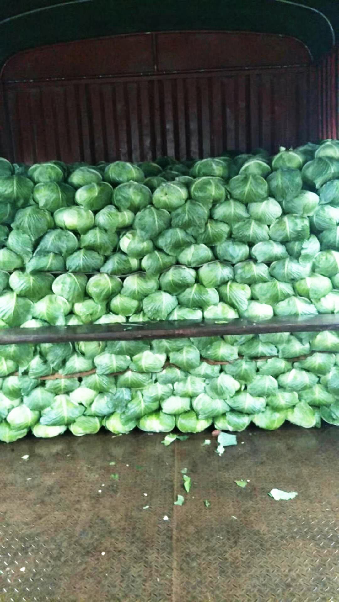 瑞禾水果有机肥厂家