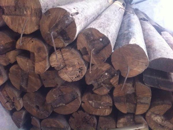 成都金丝楠木供应厂家