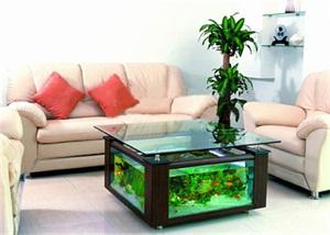 濟南茶幾生態魚缸定做