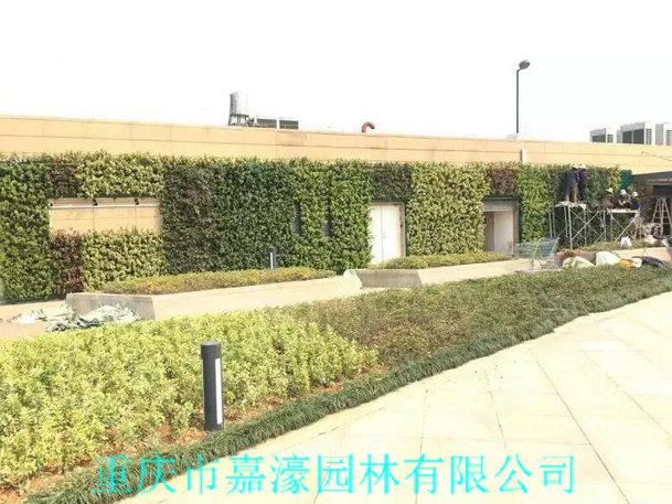 仿真植物墙规划设计