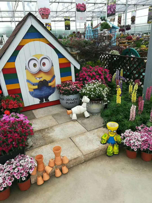 私家花园设计施工