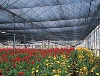花卉遮阳网