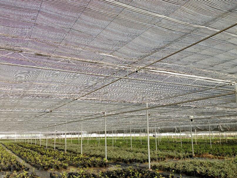 防晒网遮阳网