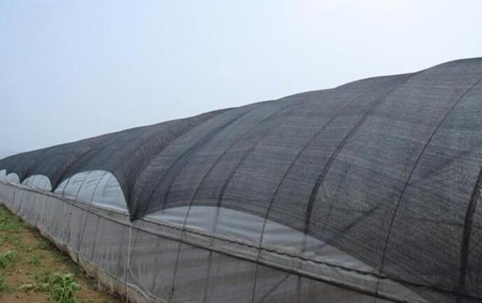 防晒网遮阳网生产厂家