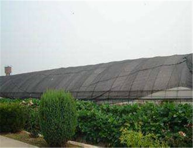 温室遮阳网
