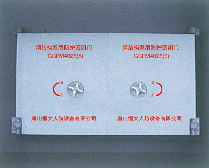 钢结构双扇防护密闭