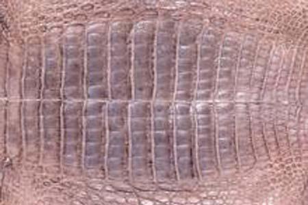 江苏鳄鱼皮