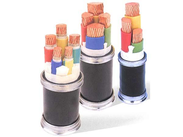 貴州聚氯乙烯絕緣電纜
