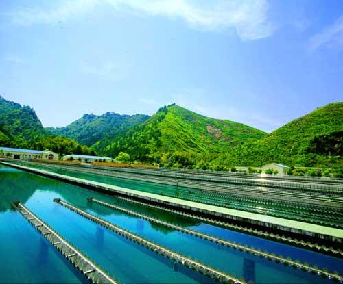 供水总站在线监测系统案例分享
