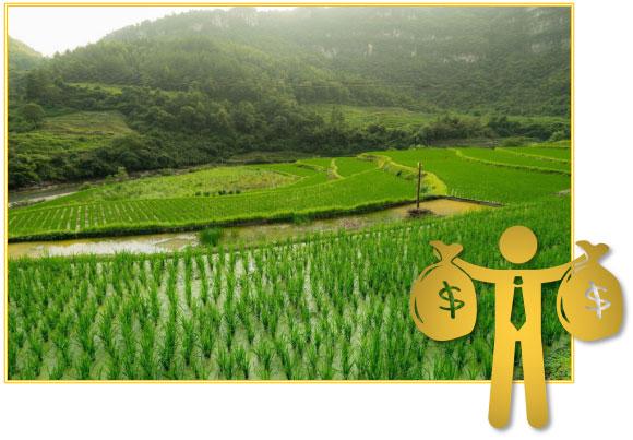 农业水价综合改革管理系统