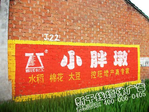 仙桃墙体广告