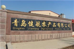 青島健航農產品