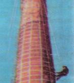 砖烟囱拆除增高