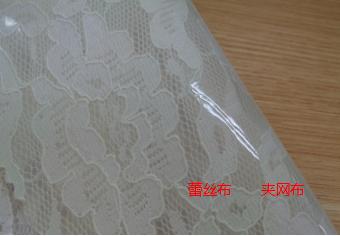 环保蕾丝布夹网布