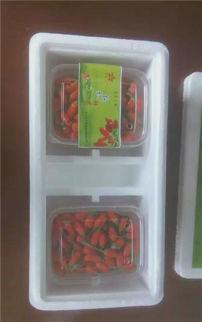兰州泡沫盒