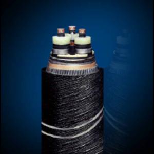 交联聚乙烯绝缘轻型浅海电力电缆