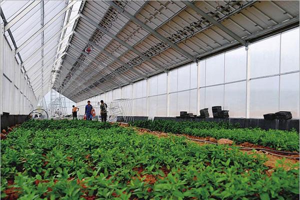 上海农业光伏供应商批发制造,中装,农业光伏生产加工