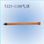TJ25-1100姘�椤�