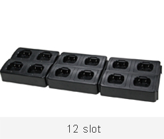 12 slot charger