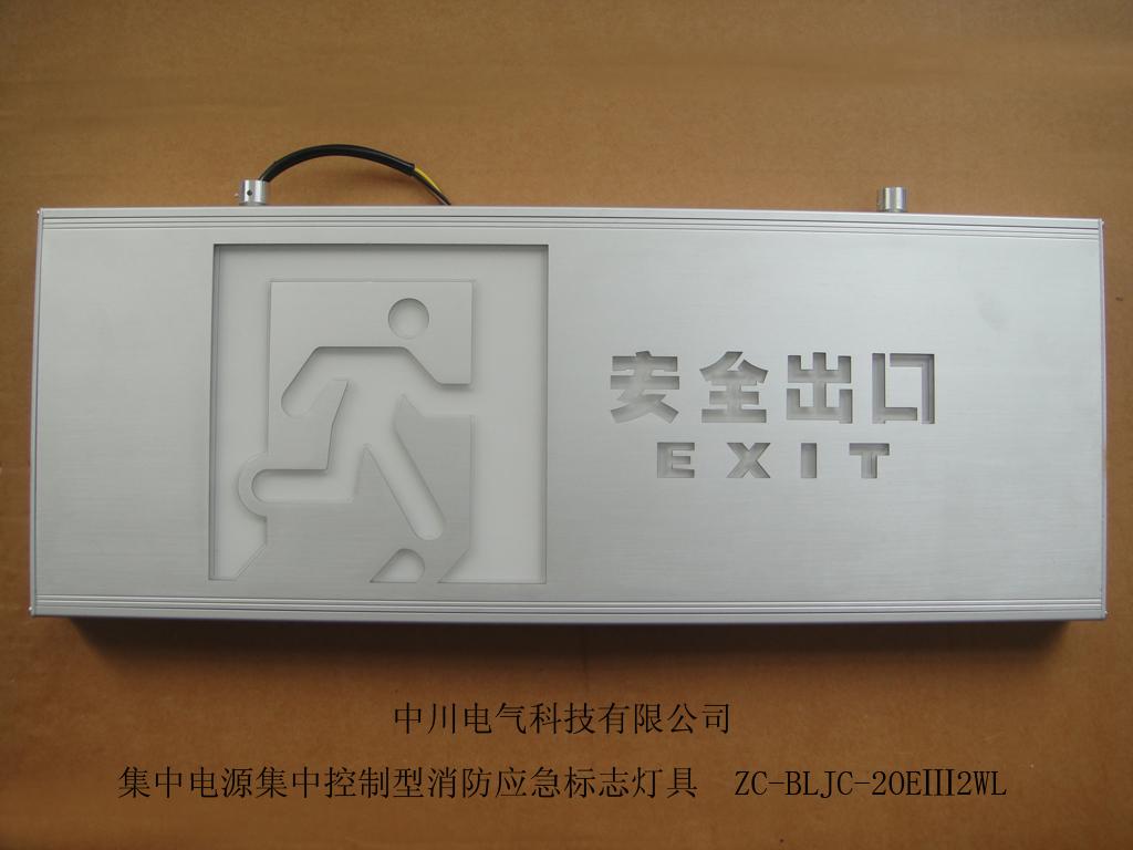 Large lifting brushed aluminum safety exit sign light