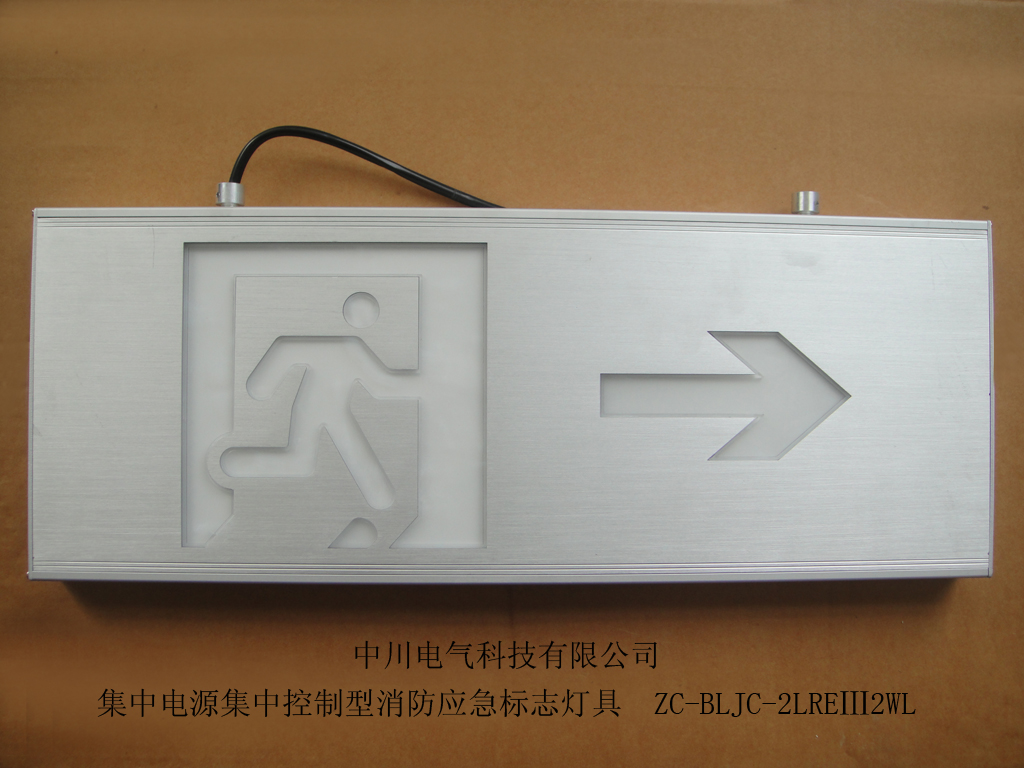 Large intelligent hoisting one-way evacuation sign light