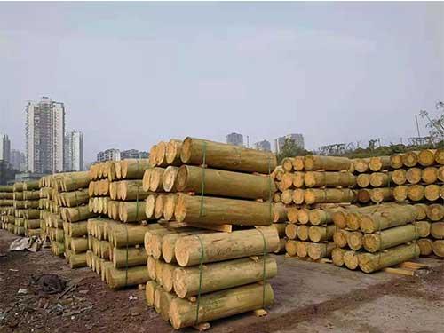 雲南建築木