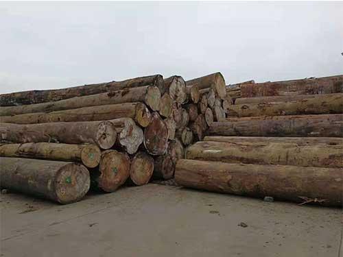 昆明进口松木市场