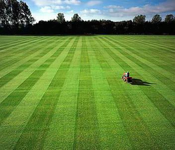 贵阳人造草坪安装