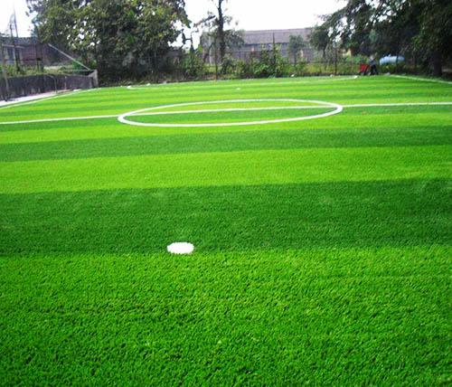 贵阳球场草坪