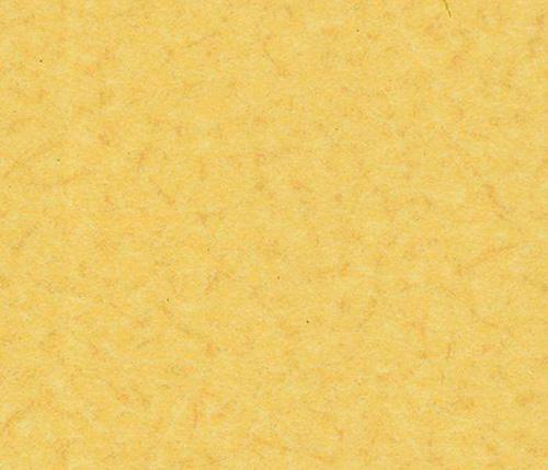 贵州家庭塑胶地板