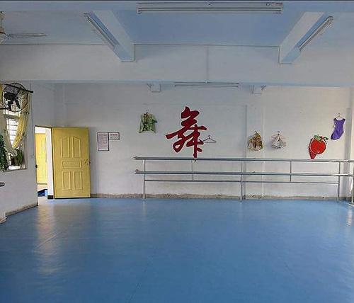 贵阳舞蹈室专用地板
